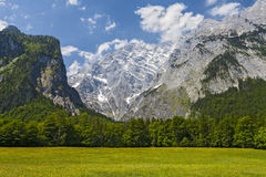 View from Konigsee.Germany. Green meadow on the background of mountains Royalty Free Stock Images