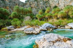 View of Kourtaliotis river and canyon near Preveli beach at Libyan sea, river and palm forest, southern Crete. Royalty Free Stock Photos