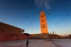 View of the Koutubia Mosque, the most popular mosque in Marrakec Stock Photos