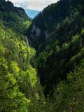 Valley, forest, beautiful view, pure nature, West Tatras, Slovakia stock photography