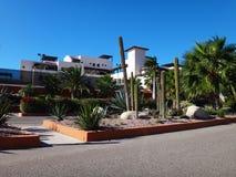 Scene of La Paz, Baja California Sur, Mexico. View of La Paz, Baja California Sur, Mexico stock photography