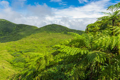 View from La Soufriere Royalty Free Stock Photo