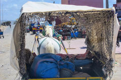 View laden horse-drawn carriage, Morocco Stock Images