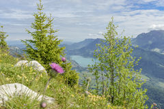 View of Lake Annecy in the French Alps Royalty Free Stock Photography