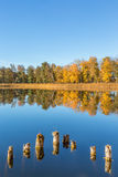 View of a lake in the autumn Royalty Free Stock Photography