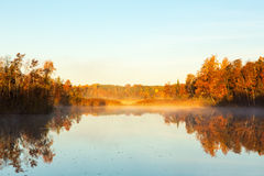 View of a lake at dawn in autumn Stock Images