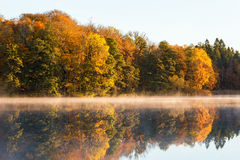 View of the lake with deciduous forest in fall Stock Images