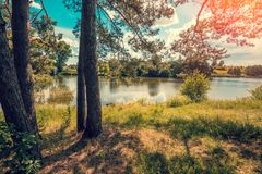View of the lake at the edge of the forest. Wilderness, beautiful nature. Lake with blue sky stock image