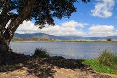 View of lake and edge of Ngorongoro Crater. Tanzania stock photography