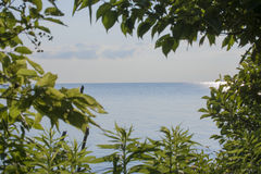 View of lake Erie Stock Image