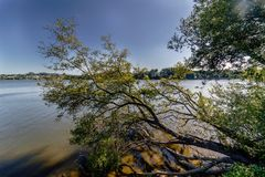 View of a lake in Galicia Spain through the trees of the shore Stock Image