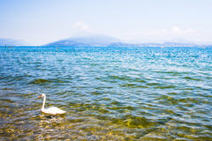 View of Lake Garda Royalty Free Stock Photo