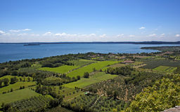 View on the lake Garda and  vineyards. View on the lake Garda and Italian vineyards and gardens Royalty Free Stock Images