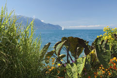 View of the lake Geneva. Landscape with a lake and mountains, near the town of Montreux Stock Photos