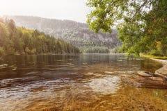 View at the lake great arber. Bavaria Royalty Free Stock Photos