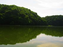 View of the lake and green forest stock image