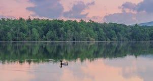 View of the lake in Julian Price Memorial Park stock photos