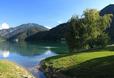 View of Lake Ledro in Italy. With the willowtree in foreground Royalty Free Stock Image