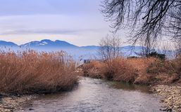 View on lake Leman. Part of shore the lake Leman, city of Morges, Swiss Stock Images