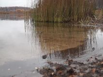 View of the lake on a rainy autumn day stock footage