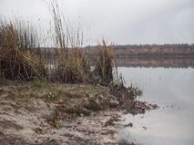 View of the lake on a rainy autumn day stock video footage
