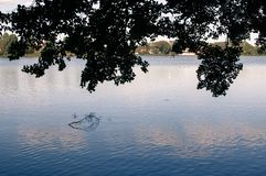 View of lake reflecting cloudy sky and tree sillhouette royalty free stock image