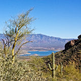 View of Lake Roosevelt Stock Image