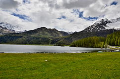 View of the lake of Sils Stock Photo