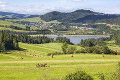 View of the lake Sromowieckie and the village Niedzica, Poland Royalty Free Stock Photography