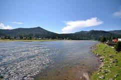 View of the lake Teletskoye Stock Images