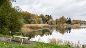 View lake Toolo in Helsinki Finland Royalty Free Stock Photo