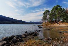 View of the lake with trees. View of the lake in autumn Royalty Free Stock Photo