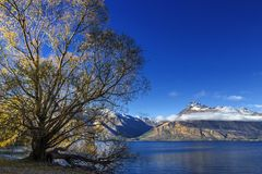 View of Lake Wakatipu Stock Images