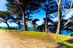 The view of Lands end at San Francisco- San Francisco. summer , cloud , rock , sea, plant. stock image