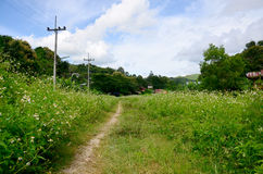 View of Landscape at Baan Natong village Royalty Free Stock Photography