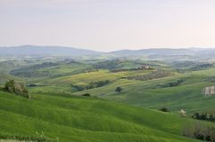 View of the landscape in the Crete Senesi Royalty Free Stock Image