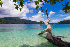 View landscape kai travel thailand nature sand sea clouds beautiful vacation relax turquoise paradise water sky blue andaman touri. Ravee island at Satun Royalty Free Stock Images