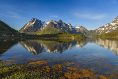The view on the landscape in Lofoten islands Stock Photo