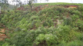View of landscape from moving train from the window of a passenger on board stock video footage