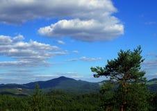 View on the landscape of National Park Czech Switzerland. Landscape in National Park Czech Switzerland, Czech republic, Europe stock image