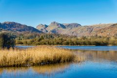 A view of the Langdale Pikes from Elterwater Stock Images