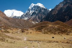 View of Langtang Valley, Langtang National Park, Rasuwa Dsitrict, Nepal Stock Images