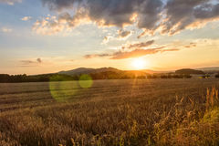 View of a large field at sunset. A large field full of crops beyond which mountain ranges and trees are seen against a backdrop of a setting sun Royalty Free Stock Photos