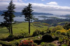 A view from Larnach castle. View from Larnach castle - Otago peninsula, New-Zealand Stock Photography