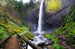 A view of Latourell Falls at Columbia river gorge Royalty Free Stock Photography