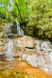 View of Laurel Falls in Great Smoky Mountains National Park Stock Image