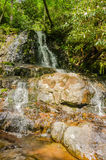View of Laurel Falls in Great Smoky Mountains  National Park Royalty Free Stock Images