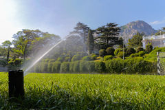 View of the  lawn that is watered Royalty Free Stock Photo