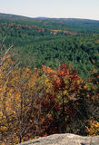 View From Ledge - NH Fall Forest
