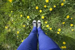 View of legs in grass Royalty Free Stock Photo